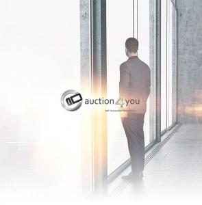 B2B Gebrauchtwagen Auktionen